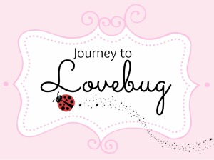 journeytolovebug